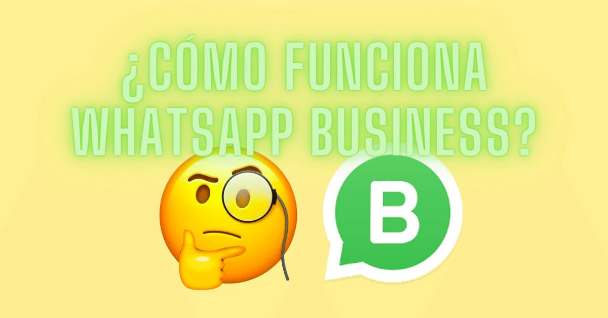 como funciona whatsapp business guia 2020