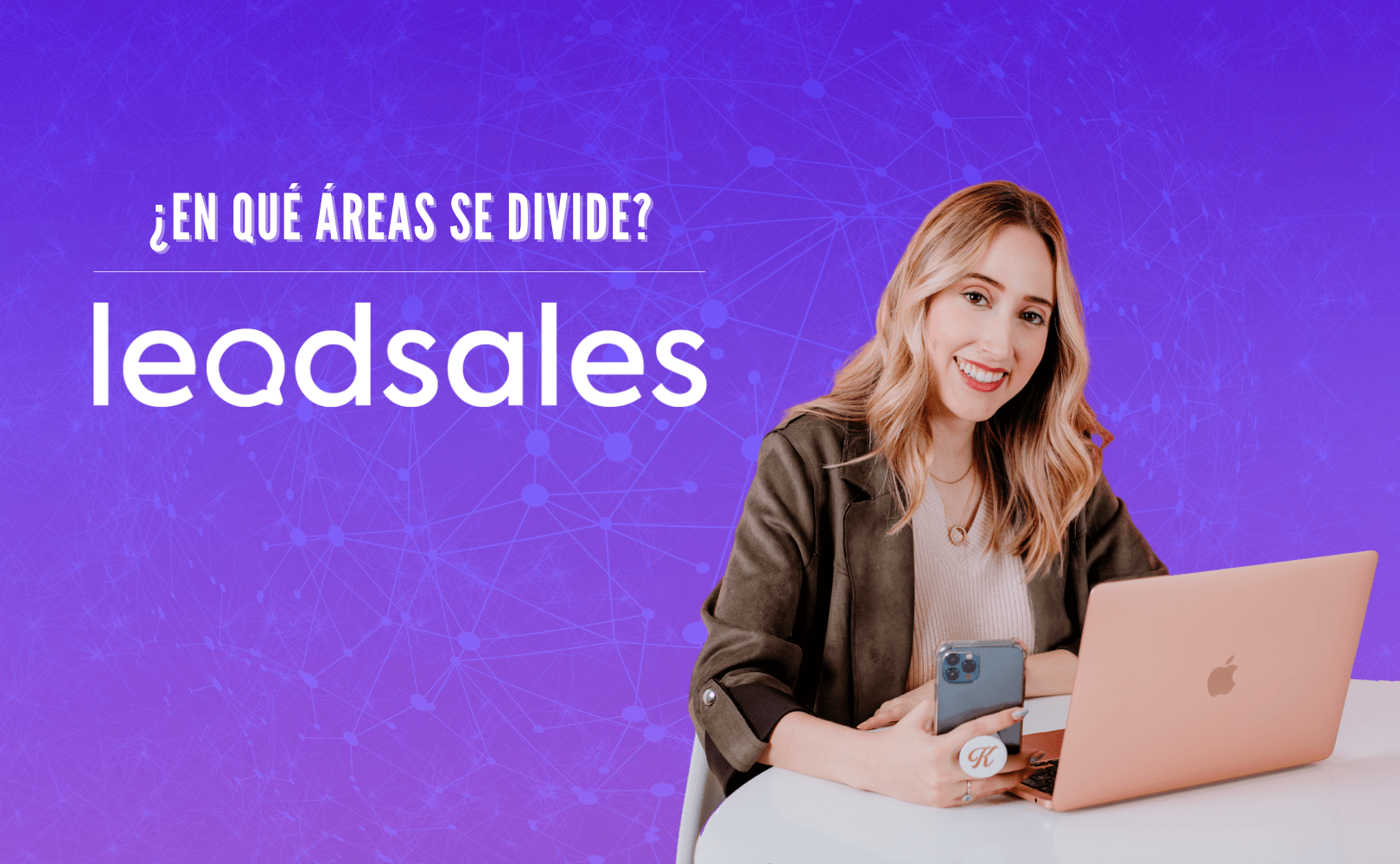¿En qué áreas se divide Leadsales?